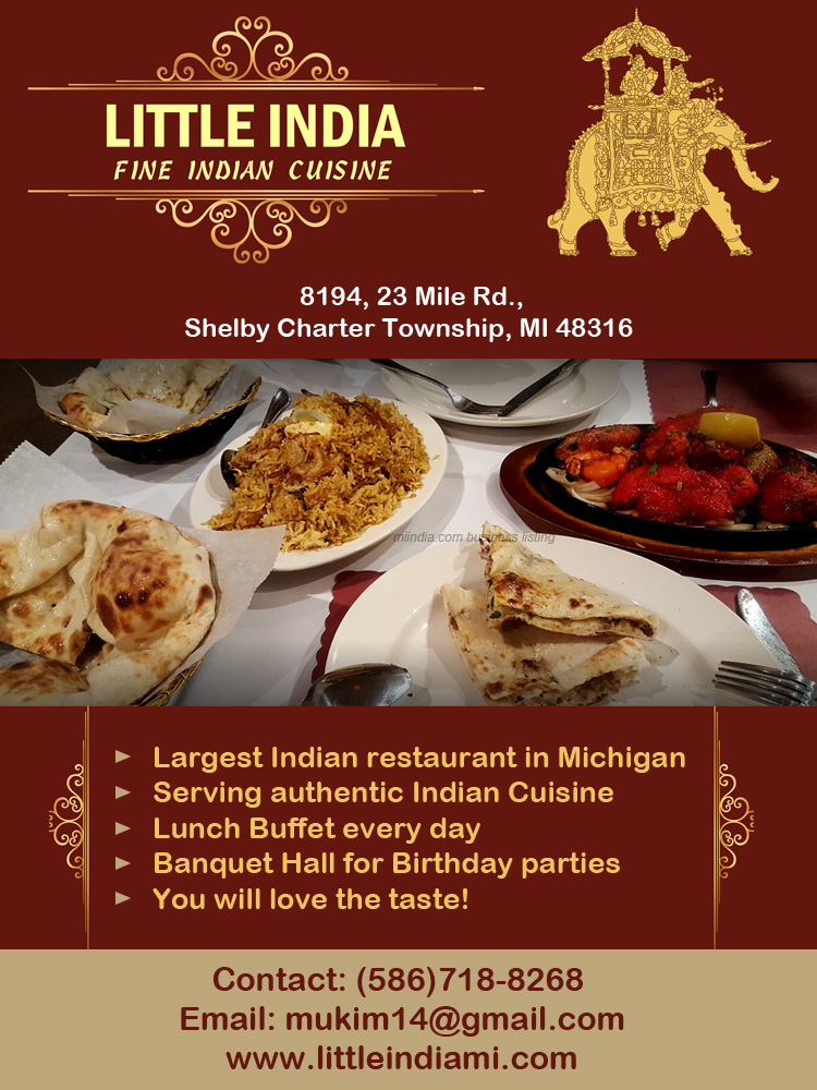 Little India, Amazing restaurant in Shelby Twp